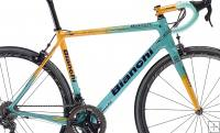 Bianchi Specialissima CV Marco Pantani Frameset Limited Edition
